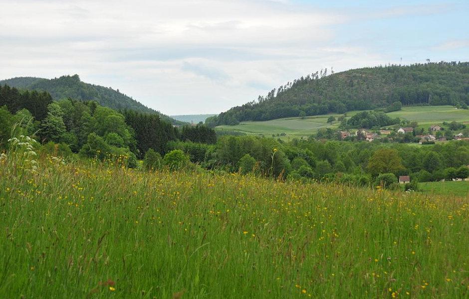 points de vue Vosges